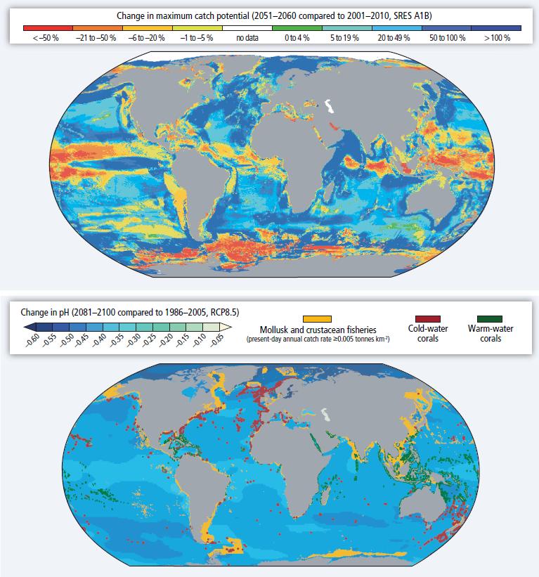 Riesgos del cambio climático para los caladeros. IPCC, 2014.